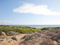152-parco-naturale-dune-costiere-campomarino